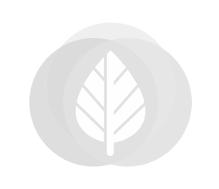 Tuindeur Privacy hardhout in stalen frame en RVS slot 110x195cm